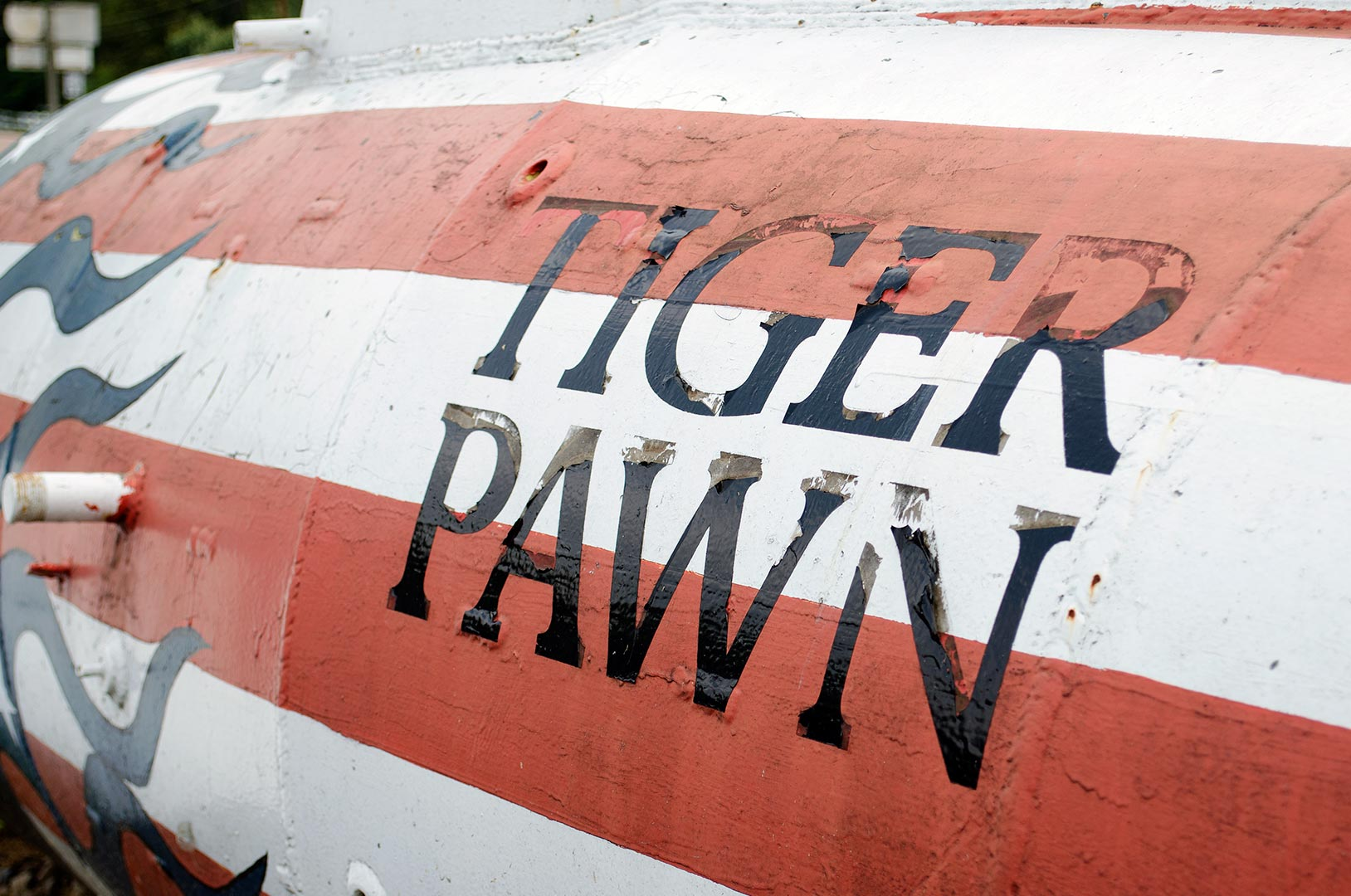 TigerPawn3